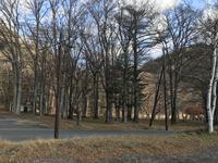 中禅寺湖の写真・動画_image_395980