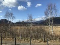 中禅寺湖の写真・動画_image_395984