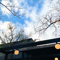 GARDEN HOUSE(ガーデンハウス)の写真・動画_image_398540