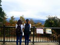 高尾山の写真・動画_image_405240