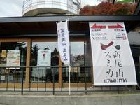 高尾山スミカの写真・動画_image_405256