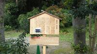 円覚寺の写真・動画_image_405906