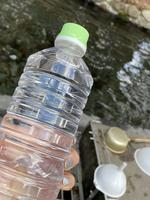 白川水源の写真・動画_image_406806