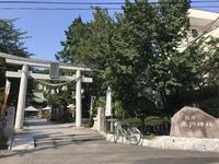 鎮守氷川神社の写真・動画_image_408707