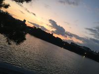 大濠公園の写真・動画_image_410805
