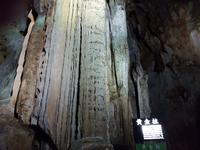 秋芳洞の写真・動画_image_413279