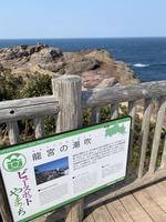 元乃隅稲成神社の写真・動画_image_413798