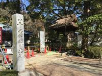 早雲寺の写真・動画_image_415013