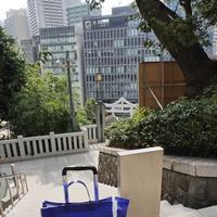 日枝神社の写真・動画_image_416324