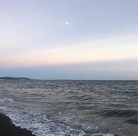 七里ケ浜の写真・動画_image_416914