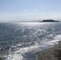 七里ケ浜の写真・動画_image_416916