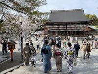 八坂神社の写真・動画_image_420104