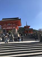 清水寺の写真・動画_image_421620