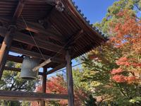 清水寺の写真・動画_image_421628