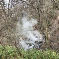 西の河原公園の写真・動画_image_423713