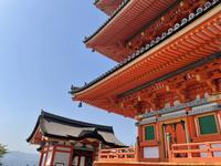 清水寺の写真・動画_image_424836