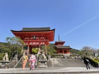 清水寺の写真・動画_image_424837
