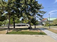 平安神宮の写真・動画_image_425015