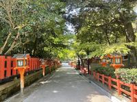 八坂神社の写真・動画_image_425028