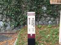 浜松城の写真・動画_image_426685