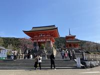 清水寺の写真・動画_image_436880