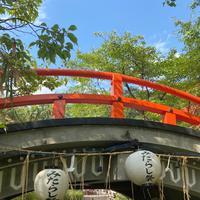 下鴨神社(賀茂御祖神社)の写真・動画_image_449347