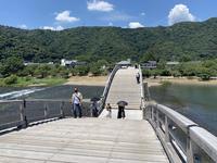 錦帯橋の写真・動画_image_452128