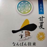 福岡空港の写真・動画_image_456431