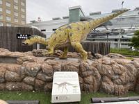 福井駅 西口広場(恐竜広場)の写真・動画_image_460335