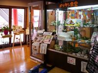 神戸ポートタワーの写真・動画_image_61596