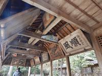 坂越の写真・動画_image_63863