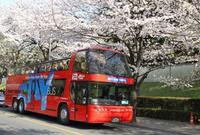 スカイバス 三菱ビル前バス停の写真・動画_image_68032
