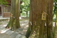 洲原神社の写真・動画_image_82121