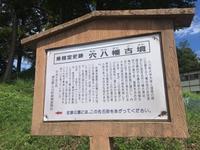 穴八幡古墳の写真・動画_image_83762