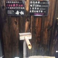 帝松の写真・動画_image_83765