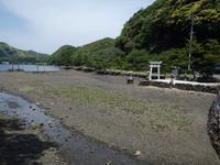 和多都美神社の写真・動画_image_87431