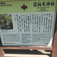 荏柄天神社の写真・動画_image_87938