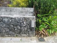 久高島の写真・動画_image_89442