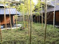 箱根湯寮の写真・動画_image_98960