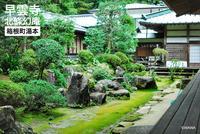 早雲寺の写真・動画_image_99969