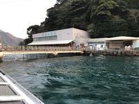 淡島マリンパークの写真・動画_image_229076