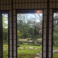 旧三井家下鴨別邸の写真・動画_image_229666