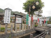 厳島神社 美人弁天の写真・動画_image_236334