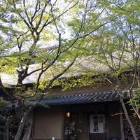 山荘無量塔の写真・動画_image_239919