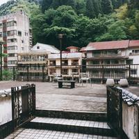 杖立温泉の写真・動画_image_241769