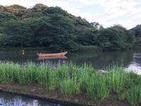 三溪園の写真・動画_image_244968