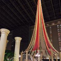 東京ベイ舞浜ホテル クラブリゾートの写真・動画_image_245615