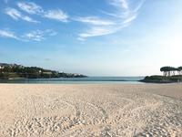 エメラルドビーチの写真・動画_image_246230