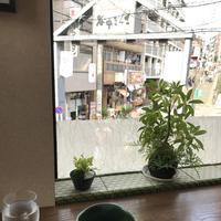 やなか健真堂の写真・動画_image_248544