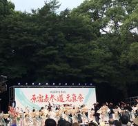 明治神宮前(原宿)駅の写真・動画_image_261575